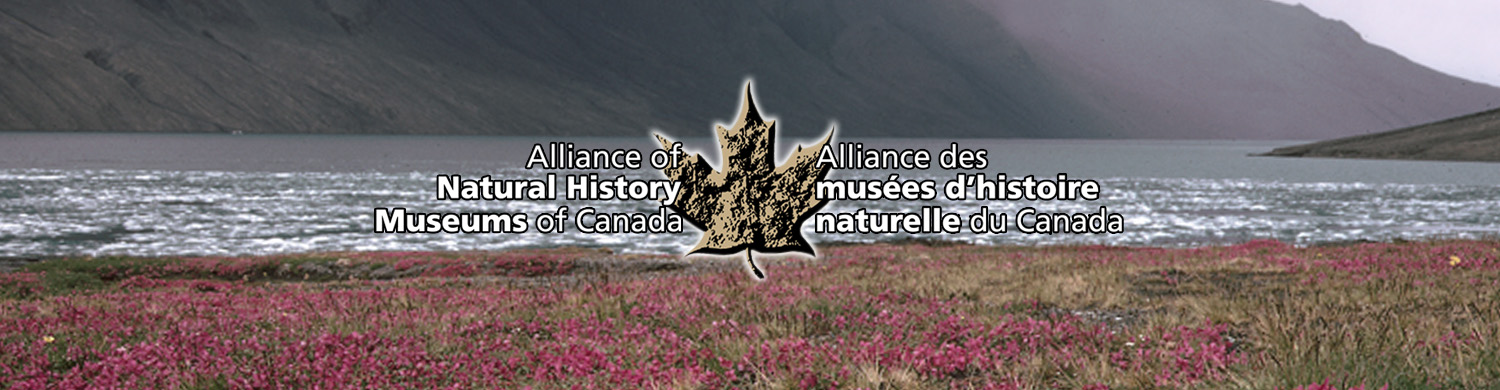 Alliance of Natural History Museums of Canada. Alliance des musées d'histoire naturelle du Canada. Coming Soon. À venir.